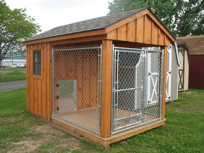 Kennels for Dog boarding in homes